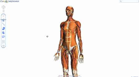 Google实验室推出人体透视学习新产品创意设计