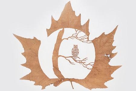 叶子上的艺术创意设计