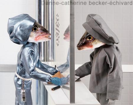 搞怪鱼头摄影摆拍创意设计