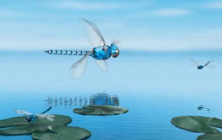 机械蜻蜓创意设计