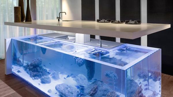 厨房与水族箱的结合创意设计