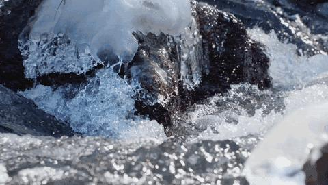 农夫山泉最新广告创意设计,长白山拍摄堪比野生动物纪录片