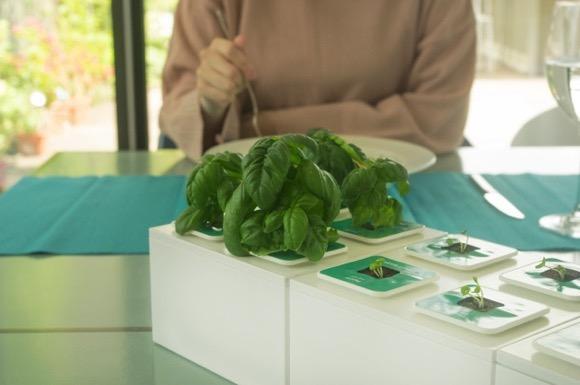 方便维护的模块化盆栽创意设计