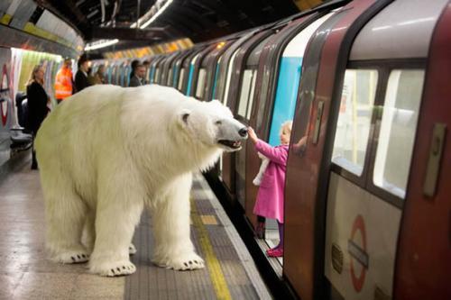 伦敦地铁站出现2.4米北极熊创意设计