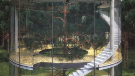 森林玻璃屋创意设计