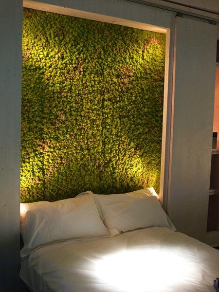 创意家居装修:苔藓墙创意设计