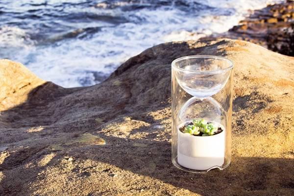 沙漏式植物温室创意设计