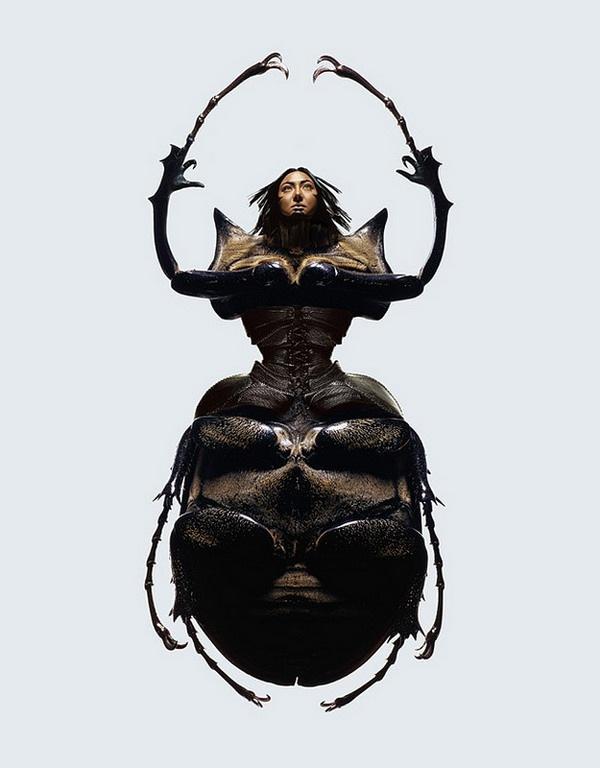 美女与昆虫创意设计