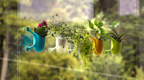 吸附在玻璃窗上的小盆栽创意设计