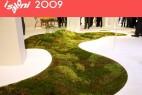 苔藓地毯创意设计