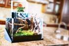 桌面生态系统园创意设计