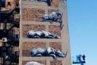 墙壁上的猛兽绘画创意设计