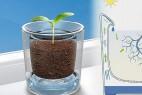 水回收花盆创意设计,有效减少浇水次数
