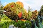 国际立体花坛大赛创意设计