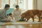 日本亚马逊超感人广告创意设计《狗狗扮狮子》