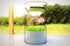 玻璃漏斗小花盆创意设计